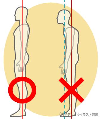 姿勢の表現